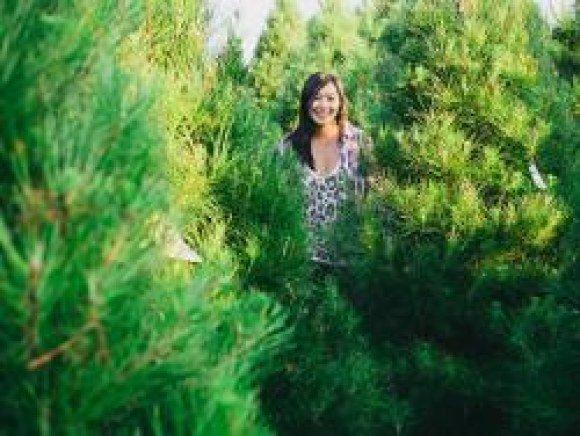 gardenbetty trees