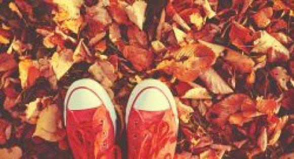 bproper sneakers leaves